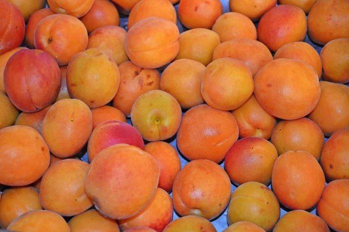 Français déçus par le goût des fruits en grandes surfaces