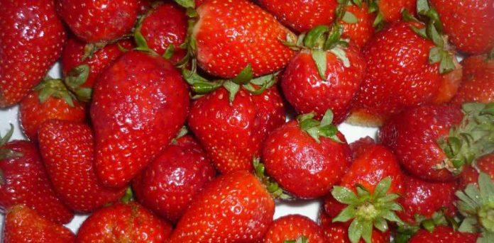 Australie: des aiguilles dans les fraises (Détail)