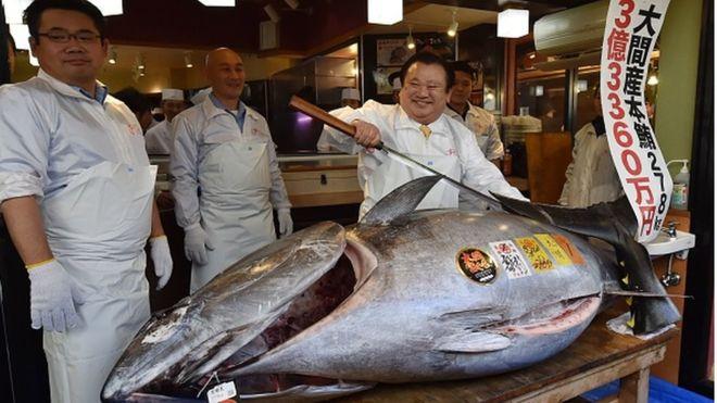 Un thon rouge vendu à 2,7 millions d'euros au Japon (Image)