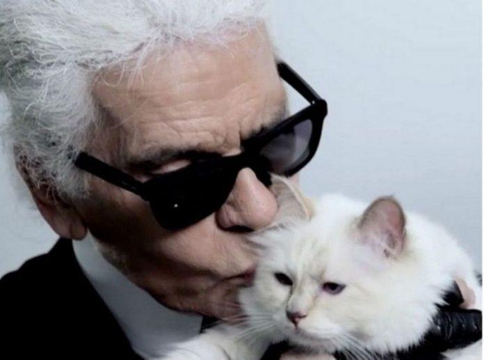 Le Chat héritier de Karl Lagerfeld (détail)