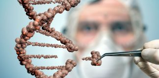 Affaire Grégory : des analyses ADN pour plus de 670.000 euros