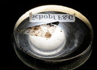 La plus ancienne trace de vie sur terre