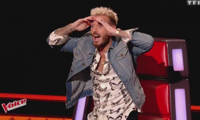 The Voice : Nouveaux coachs de l'émission - De belles surprises