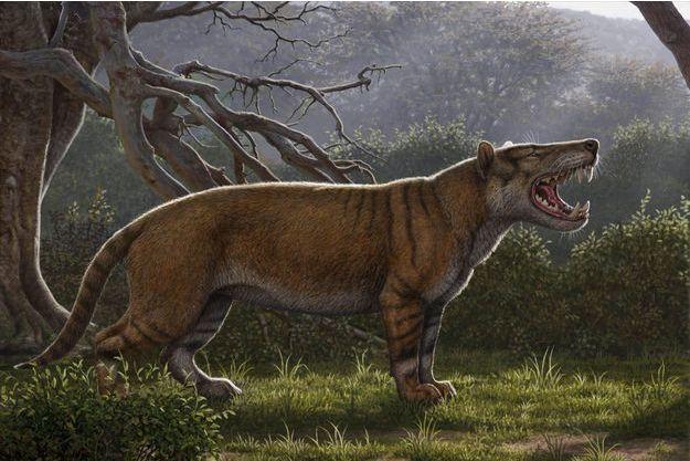 Découverte d'un lion géant au Kenya (détail)