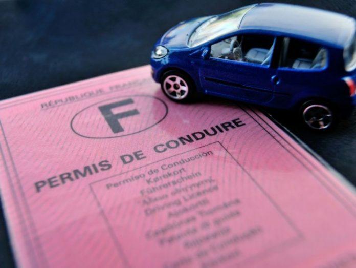 Baisse du permis de conduire : les mesures du gouvernement