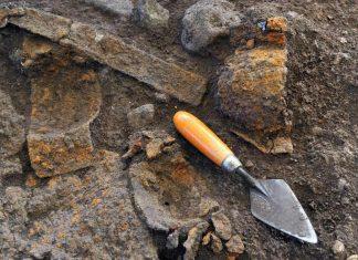 Une nouvelle espèce de dinosaure découverte en Equateur (étude)