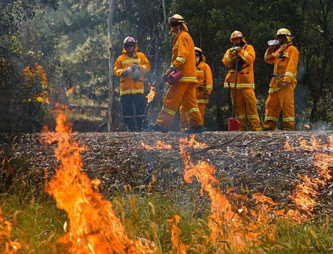 Des pompiers français sont arrivés en Australie (détail)