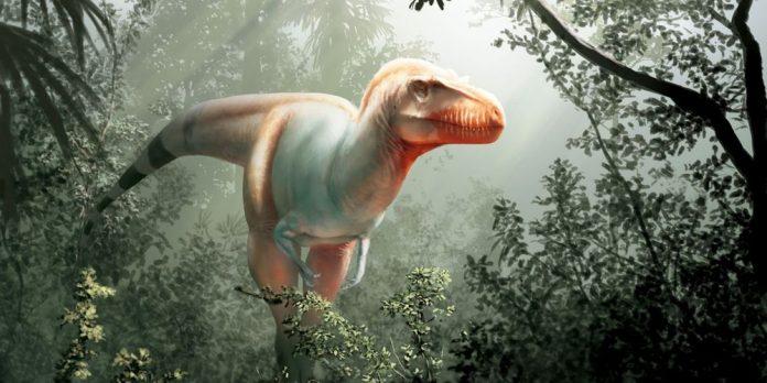Découverte d'un dinosaure lointain cousin du T-Rex au Canada