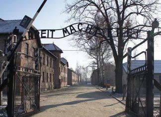 Auschwitz : Des objets cachés par des prisonniers découverts