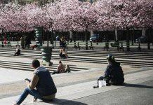 COVID-19: la mortalité en France retrouve un niveau normal au mois de mai