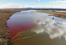 Grave pollution au diesel dans une rivière de l'Arctique (détail)