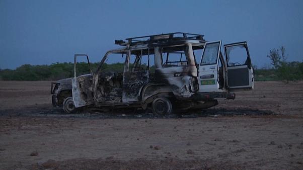 Niger : des humanitaires français tués par des hommes armés (détail)