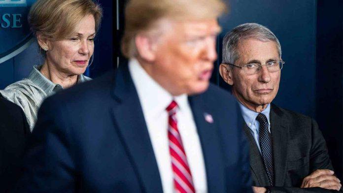 Election américaine: Trump donne son feu vert au processus de transition