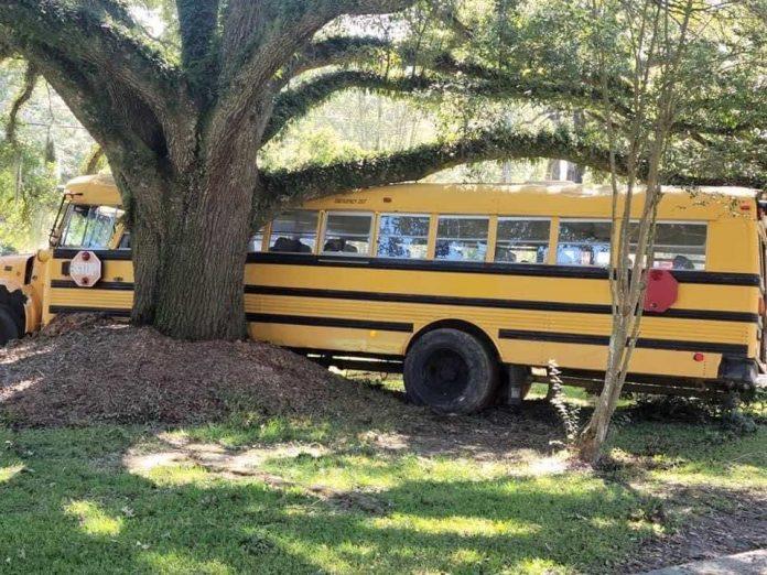 Louisiane : Un enfant de 11 ans détourne un bus scolaire (VIDEO)