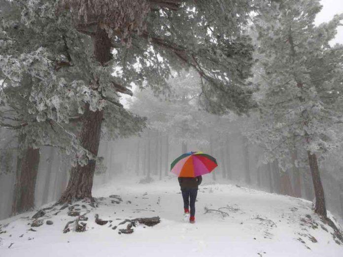 Météo : Une vague de froid intense s'abat sur la moitié nord de la France (détail)
