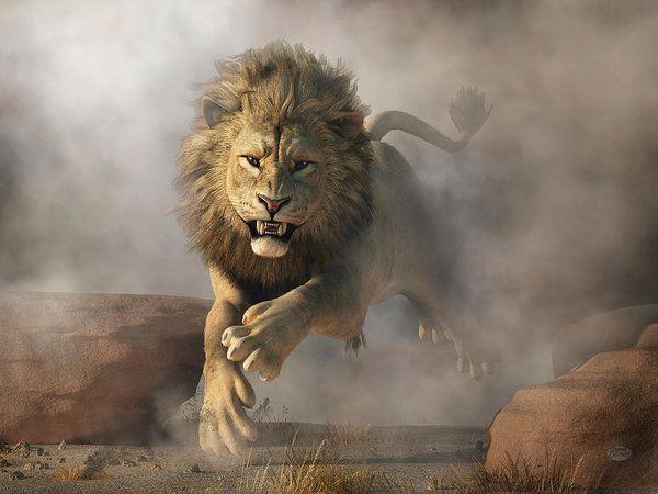 Un lion arrache le bras d'un Haut-Savoyard en Tanzanie, l'agence de voyages reconnaît sa responsabilité